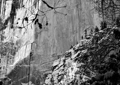 """Trees are dwarfed by the face of Half Dome"" from In Ansel Adams Footsteps: My B & W Experience in Yosemite NP"