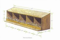 How big should a nesting box be?  12x18 won't be big enough for my Black Jersey Giant:)