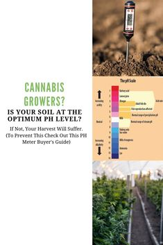 You need to measure the soil Ph levels and also for hydroponic gardening know water Ph. Read this article to find out why. Marijuana Plants, Cannabis Plant, Indoor Hydroponic Gardening, Ph Chart, Growing Weed Indoors, Best Led Grow Lights, Ph Meter, Ph Levels, Soil Ph