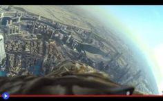 Un'aquila si lancia dalla torre più alta di Dubai L'edificio è così alto da sembrare quasi sottile: un ago acuminato, che si erge dall'area del più grande parco residenziale e commerciale della città per dominare con la sua eleganza leggiadra gli al #animali #uccelli #dubai #aquile