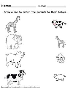 It looks like you're interested in our Animals Matching Worksheet. We also offer many different Preschool Worksheets on our site, so check us out now and get to printing! Farm Animals Preschool, Animal Activities For Kids, Preschool Colors, Toddler Learning Activities, Preschool Activities, Matching Worksheets, Animal Worksheets, Free Printable Worksheets, Preschool Printables