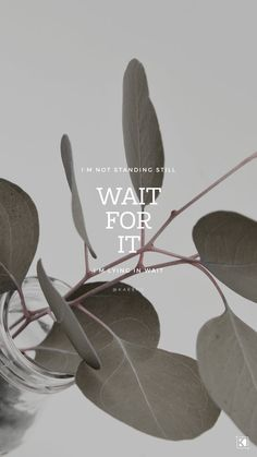 Wait For It Lyrics, Hamilton | KAESPO Design