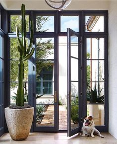 An Arizona Abode Is Designed For Family Gatherings - Luxe Interiors + Design Floor To Ceiling Windows, Windows And Doors, Marquise, Architecture Details, Vintage Architecture, Custom Homes, New Homes, House Design, House Window Design