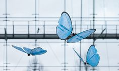 A Drone Butterfly Army Takes Flight | The Creators Project