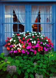 Window box full of impatients ~ lovely w/window color and greenery