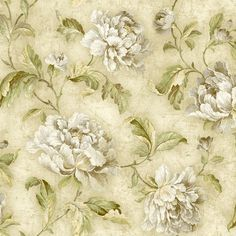 521-70404 Neutral Cabbage Rose Trail - Fairwinds Studios Wallpaper Back bedroom wall?