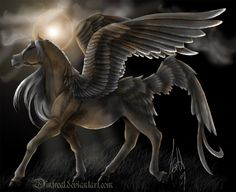 Google Image Result for http://fc08.deviantart.net/fs19/i/2008/240/5/9/DarkSun_Pegasus_by_Dinfreal.jpg
