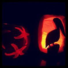 Coastal carved pumpkins- Pelican and starfish pumpkins
