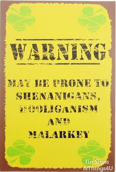 Irish Warning rustic TIN SIGN shenanigan bar pub metal wall decor funny gift OHW