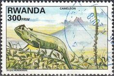 Sello: Cameleon (Ruanda) (Animals) Mi:RW 1464,Yt:RW 1327
