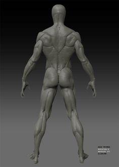 Full-body Back Male