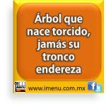 #Dichos y #Refranes Árbol que nace torcido, jamás su tronco endereza Spanish Memes, Spanish Quotes, Vox Populi, Old Quotes, Puerto Rico, Idioms, Good Thoughts, Proverbs, Decir No