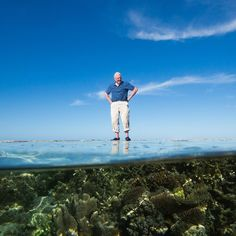 David Attenborough is back! This time he takes to the seas and skies to explore the Great Barrier Reef and it's magical residents and visitors. #australia #greatbarrierreef Coming to @cbc in January. by cbcdocs http://ift.tt/1UokkV2