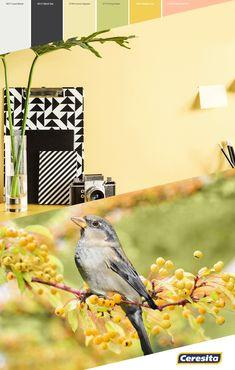 #CeresitaCL #PinturasCeresita #Color #Living #Tendencia #Pintura #Decoración #Energía #Espacios *Códigos de color sólo para uso referencial. Los colores podrían lucir diferentes, según calibrado de su monitor Bird Feeders, Monitor, Outdoor Decor, Home Decor, Color Palettes, Spaces, Pintura, Homemade Home Decor, Decoration Home