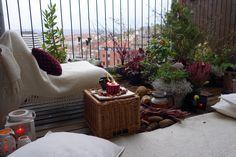 dream gardens: Novembrový balkón môže tiež žiariť farbami!