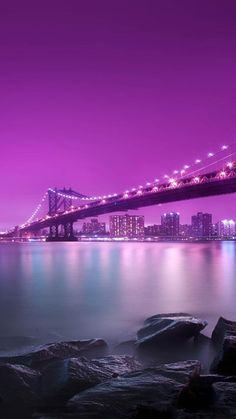 Purple City at Night