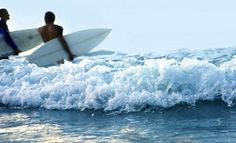 surf images, image search, & inspiration to browse every day. Surf Live, Surf Trip, Safe Haven, Summer Days, Surfboard, Airplane View, Seaside, Image Search, Things To Do