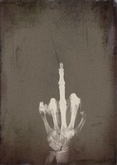 skeletal bird. perdon, pero puedes irte al carajo, I would not see you again. I hate you and too  to your stupid friend.