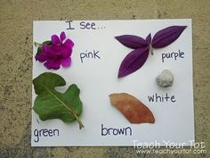 Five senses - Nature color walk, I see.. Good way to get the children to do an outdoor activity.