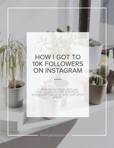 How I Reached 10 K Instagram Followers In Under 7 Months + The Impact It's Had On My