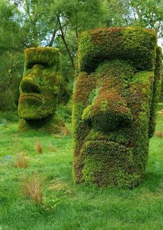 Arbosculptured Moai at Mosaiculture International, Montreal, Canada.