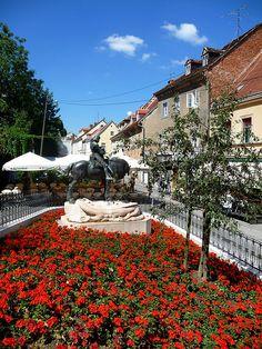 Flowers in Zagreb, Croatia