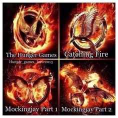 The Hunger Games / Catching Fire / Mockingjay Part 1 / Mockingjay Part 2