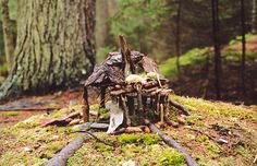 spacecraftattack:    i miss the fairy houses. i haven't visited them in so long.