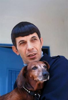 Leonard Nimoy and his old doxie Chihuahua, Dachshund Puppies, Dachshund Love, Weiner Dogs, Daschund, Lab Puppies, Science Fiction, Paddy Kelly, Star Trek Original