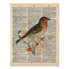 Vintage Dictionary Art Pretty Red Orange Bird Art Poster - diy individual customized design unique ideas