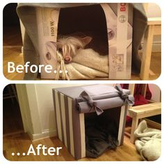 Just threw this cute house together for my pup, Dolly, a chinese crested dog! (She barely leaves it!) Diy indoor dog house from a cardboard box and 1 meter fabric! Made and originally uploaded by Sophie Crona.