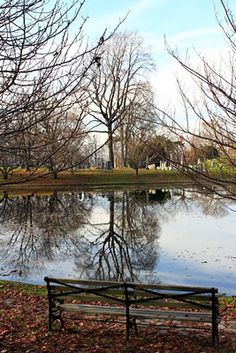breathtaking clarity at green-wood cemetery in brooklyn Cemetery Monuments, Cemetery Art, No Sleep Till Brooklyn, Headstone Inscriptions, Greenwood Cemetery, Autumn Rain, Grave Markers, Old Cemeteries, Growing Tree