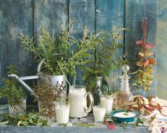 Gartenzauber | Leckeres aus dem Kräutergarten - Gartenzauber