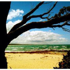 Cape Conran, Victoria, Australia