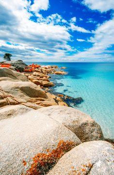 10 Amazing Places To Visit In Tasmania, Australia (10) Beautiful Places In The World, Beautiful Places To Visit, Places Around The World, Travel Around The World, Cool Places To Visit, Around The Worlds, Tropical Places To Visit, Tasmania Travel, Destinations