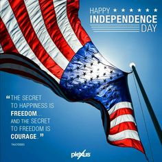 Have a fun and safe 4th of July holiday! #OnePlexus #independence #dplexuspower
