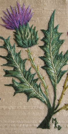 Margaret Dier Embroidery: Silk shaded thistle.