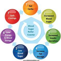 Blood-sugar-roller-coaster A diabetic way of life.