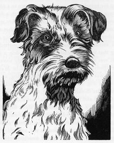 """These two wood engravings of """"Pop"""" the collie and. Woodcut Art, Linocut Prints, Engraving Printing, Wood Engraving, Scratchboard Art, Canadian Artists, Woodblock Print, Print Pictures, Dog Art"""