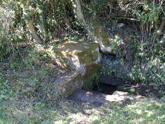 Fuente Villela 2009