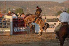 Buckaroo Photos Nevada And Oregon | Wally Blossom – Native American Rough-Stock Contractor
