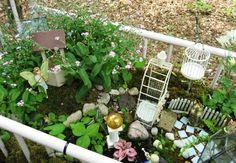 #15 Crazy, Cool Container Gardens : HGTV Gardens