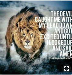 Trendy Quotes About Strength In Hard Times Faith God So True Ideas Lion Quotes, New Quotes, Bible Quotes, Bible Verses, Inspirational Quotes, Qoutes, True Quotes, Jesus Quotes, Quotes With Lions
