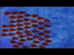 Nadarín. Leo Lionni. Kalandraka, 2007 (Reedición 2014)  Este pequeño pez negro vivirá increíbles aventuras en las profundidades del océano y tramará un plan para vencer al temido y gran atún.
