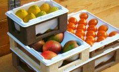 Novo modelo de caixa promete diminuir o desperdício de alimentos