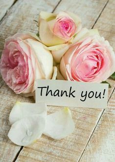 Thank you so much to all the amazing contributors on this board, I truly appreciate you all, taking the time to share your fabulous pin here, and helping to make this board awesome. You all are the best, xo Lucia Thank You Messages Gratitude, Thank You Wishes, Thank You Cards, Happy Birthday Wishes, Birthday Greetings, Birthday Cards, Bisous Gif, Thank You Images, Truly Appreciate