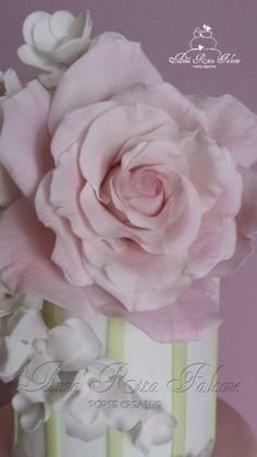 Rosa di zucchero...
