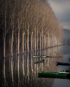 Reflection Photography, Serenity, Boats, Vineyard, Outdoor, Outdoors, Ships, Outdoor Games, Boat