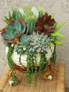 This is exactly how I want my succulent planter to look
