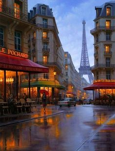 Paris, France @ Night - rained a couple of the days/nights I was there, still looks ...what's the word inviting. That's goid for France.